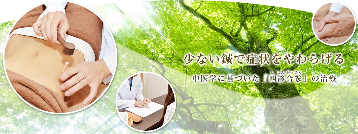 少ない鍼で症状をやわらげる中医学に基づいた「四診合参(ししんがっさん)」の治療